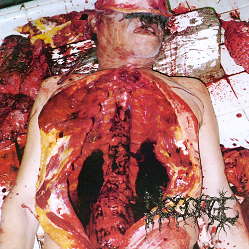 Disgorge - Chronic Corpora Infest recenzja okładka review cover