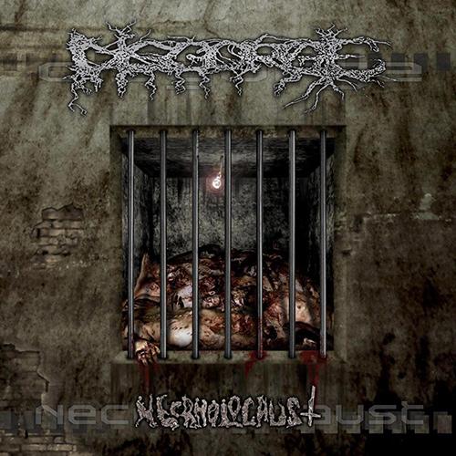 Disgorge - Necrholocaus recenzja okładka review cover