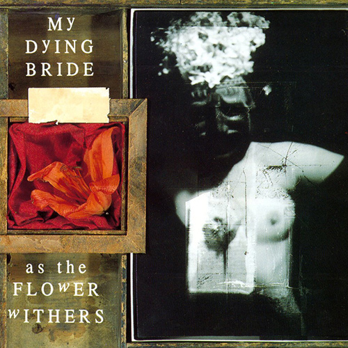 My Dying Bride - As The Flower Withers recenzja okładka review cover