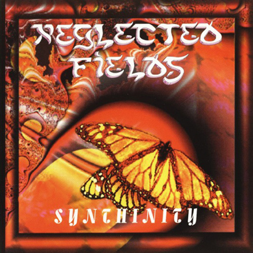 Neglected Fields - Synthinity recenzja okładka review cover