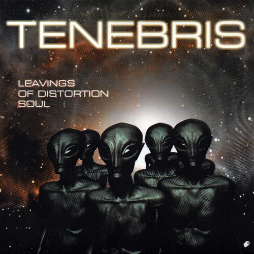 Tenebris - Leavings Of Distortion Soul recenzja okładka review cover