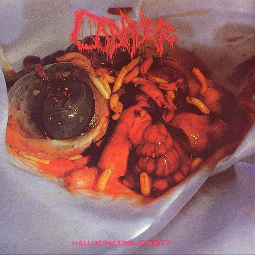 Cadaver - Hallucinating Anxiety recenzja okładka review cover