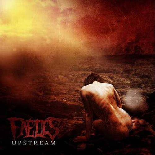 Faeces - Upstream recenzja okładka review cover