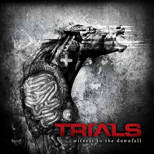 Trials - Witness To The Downfall recenzja okładka review cover