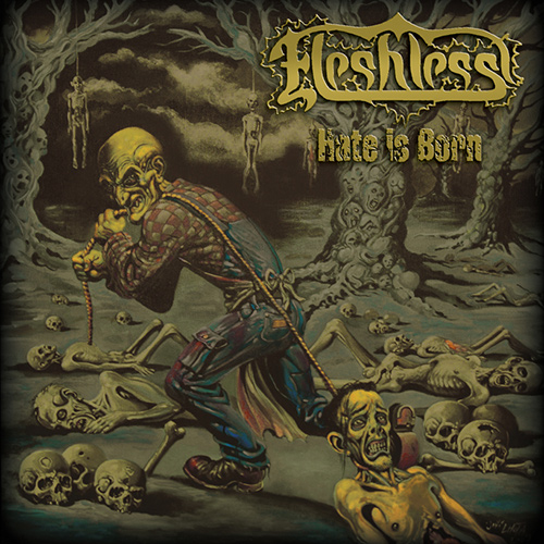 Fleshless - Hate Is Born recenzja okładka review cover