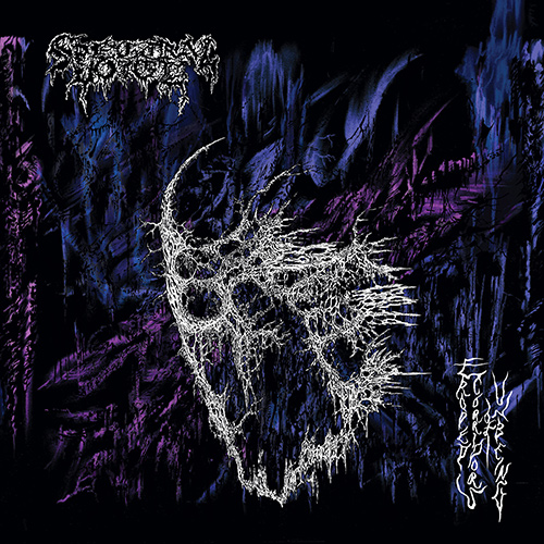 Spectral Voice - Eroded Corridors Of Unbeing recenzja okładka review cover